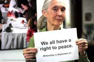 Jane Goodall Right To Peace