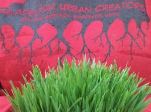 Phila Urban Creators